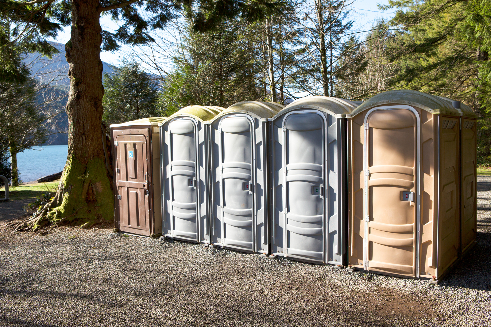 different colors of porta potty